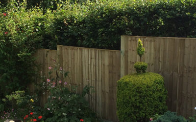 5 FENCING CONSIDERATIONS BEFORE HAVING FENCING INSTALLED